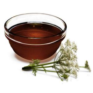Дягилевый мёд, таёжные травы